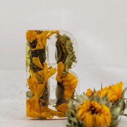 Ambers Rose 1 - Artsy Flower