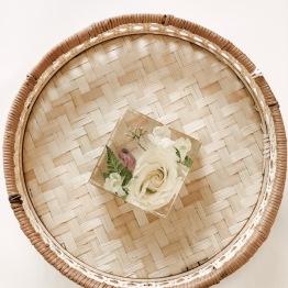 Petal Archive 2 - Artsy Flower