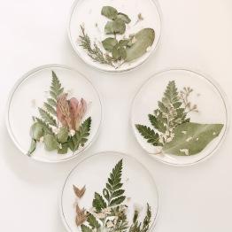 Petal Archive 3 - Artsy Flower