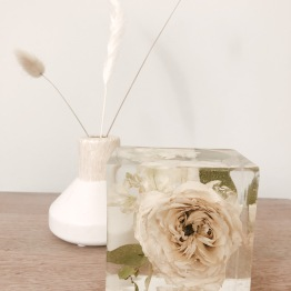 Petal Archive 5 - Artsy Flower