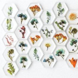 Preservation Art by A.Folha 3 - Artsy Flower