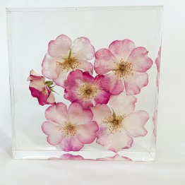 Studio Flower Preservation 2 - ArtsyFlower.com