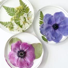 Studio Flower Preservation 3 - ArtsyFlower.com